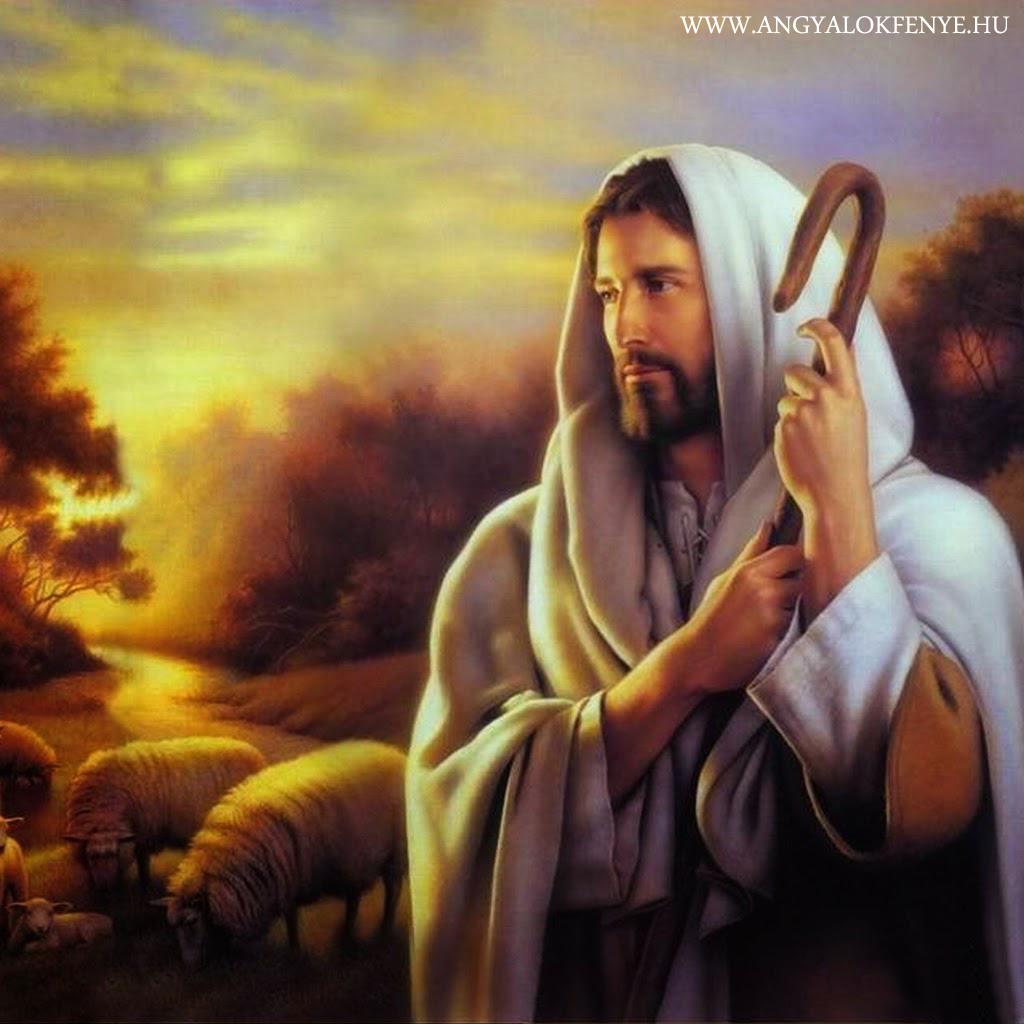 Photo of Jézus tanításai: Kövessétek az igaz utat a Krisztusságotokig!