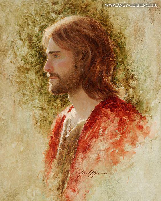 Photo of Jézus tanításai: Az ego miért nem képes meglátni a fától az erdőt?