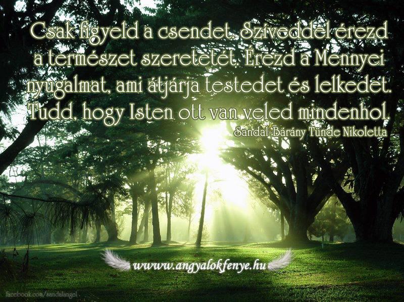 Photo of Angyali üzenet: Csak figyeld a csendet