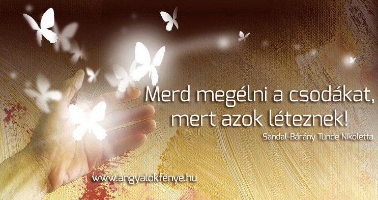 Photo of Angyali üzenet: Merd megélni a csodákat