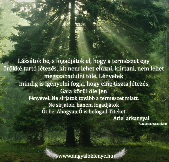 Photo of Ariel arkangyal üzenete: A természet örökké tartó létezése