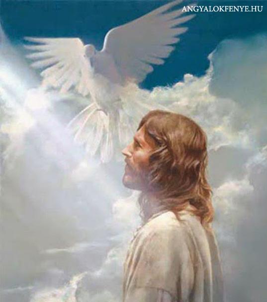 Photo of Jézus üzenete: Maradj Én Bennem!/Ünnepeld a Fényt