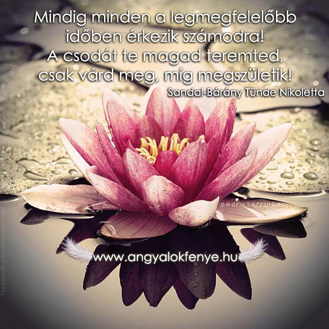 Photo of Angyali üzenet: A csodát te magad teremted