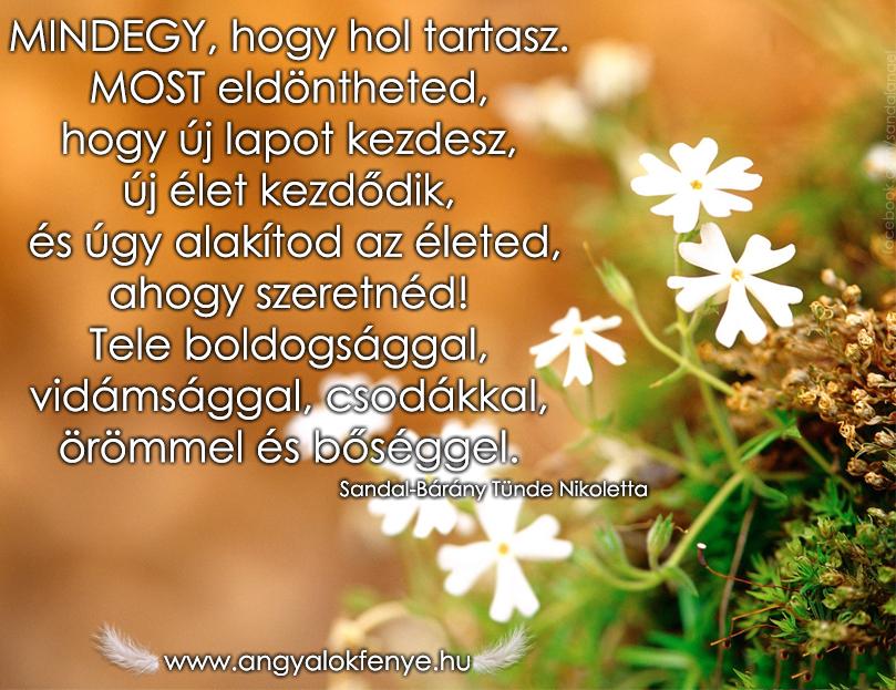 Photo of Angyali üzenet: Te alakítod az életed!
