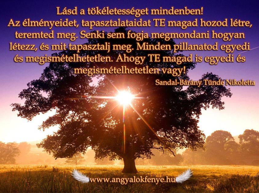 Photo of Angyali üzenet: Lásd a tökéletességet mindenben!