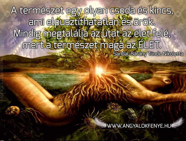 Photo of Angyali üzenet: A természet maga az Élet