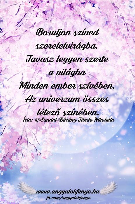 Photo of Angyali vers-üzenet: Boruljon szíved szeretetvirágba