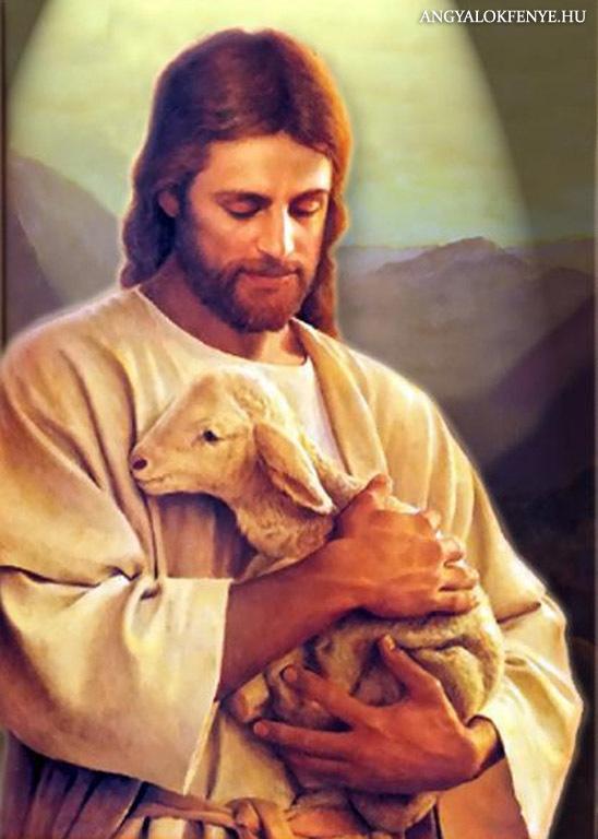 Photo of Jézus üzenete: Hús-vét/Teremtéseitek