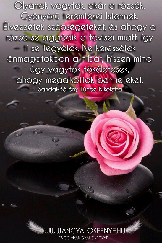 Photo of Angyali üzenet: Olyanok vagytok, akár a rózsák