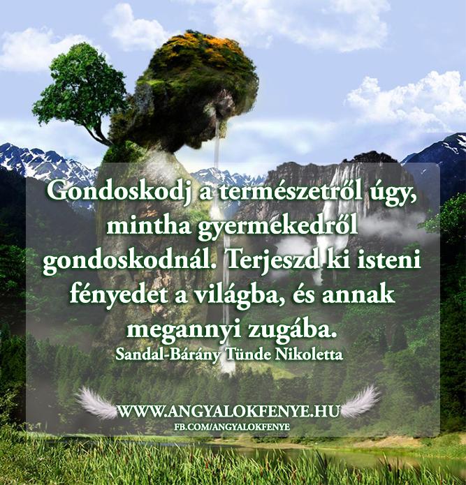 Photo of Angyali üzenet: Gondoskodj a természetről
