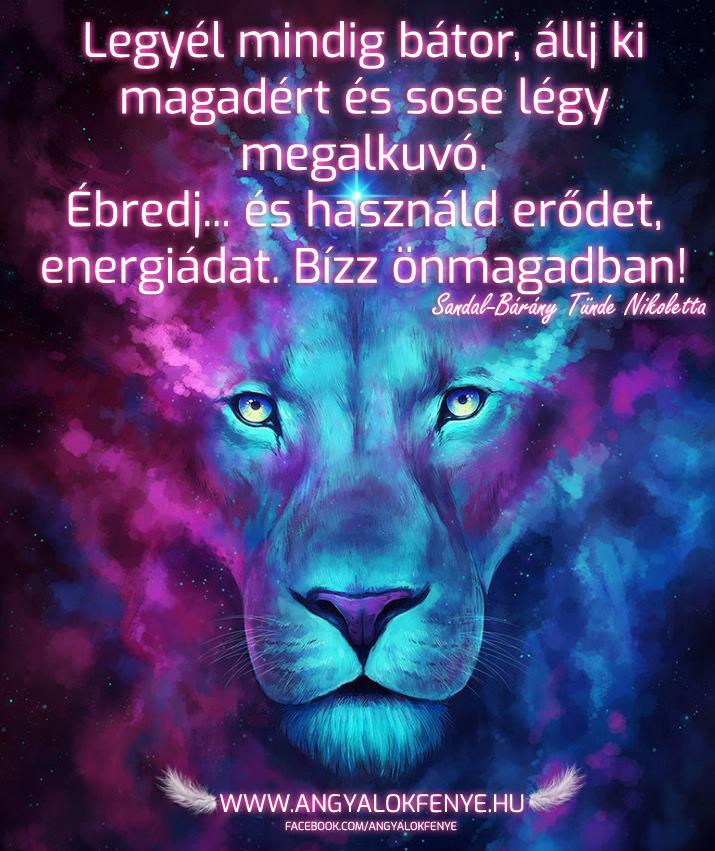 Photo of Angyali üzenet: Ébredj