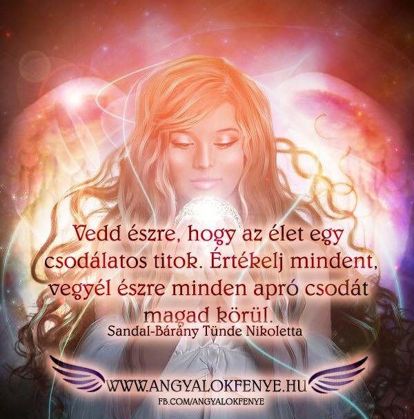 Photo of Angyali üzenet: Az élet egy csodálatos titok