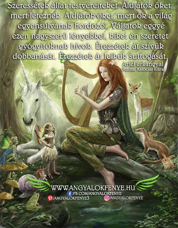 Photo of Ariel arkangyal üzenete: Szeressétek állat testvéreiteket