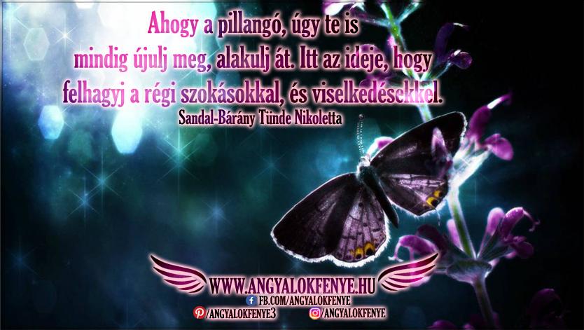 Photo of Angyali üzenet: Újulj meg