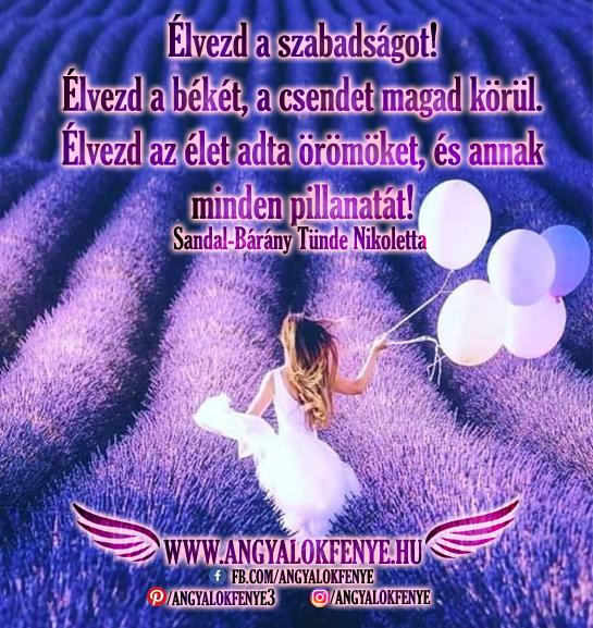 Photo of Angyali üzenet: Élvezd a szabadságot