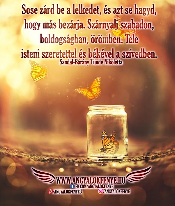 Photo of Angyali üzenet: Szárnyalj szabadon