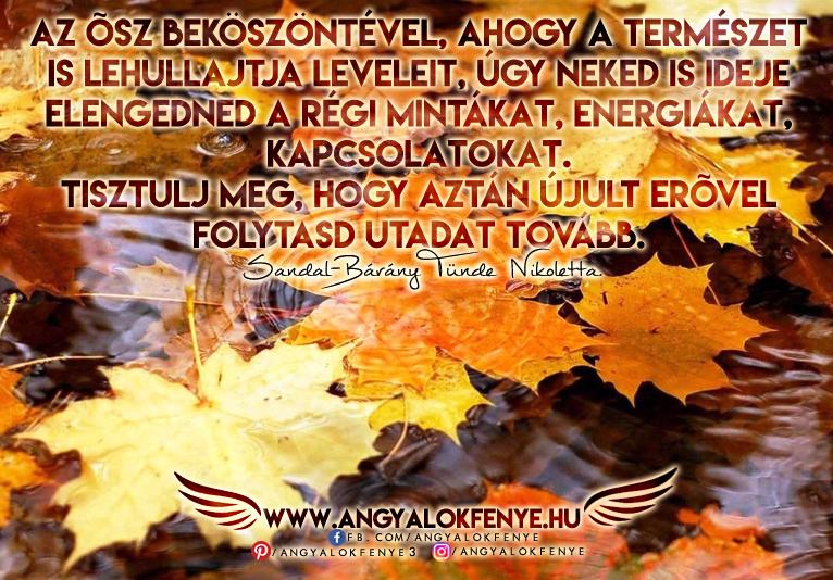 Photo of Angyali üzenet: Engedd el a régi mintákat, energiákat