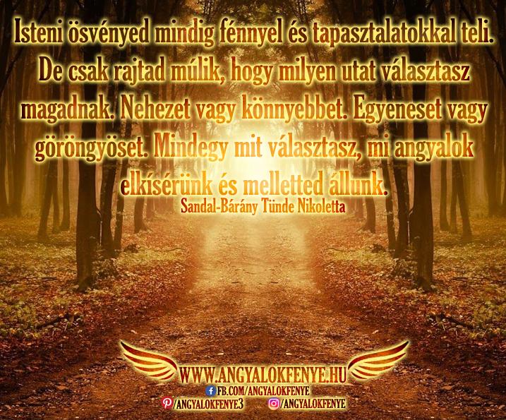 Photo of Angyali üzenet: Isteni ösvényed mindig fénnyel és tapasztalatokkal teli