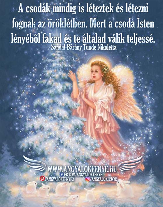 Photo of Angyali üzenet: A csodák mindig is léteztek