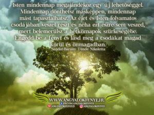Angyali üzenet-Isten mindennap megajándékoz egy új lehetőséggel
