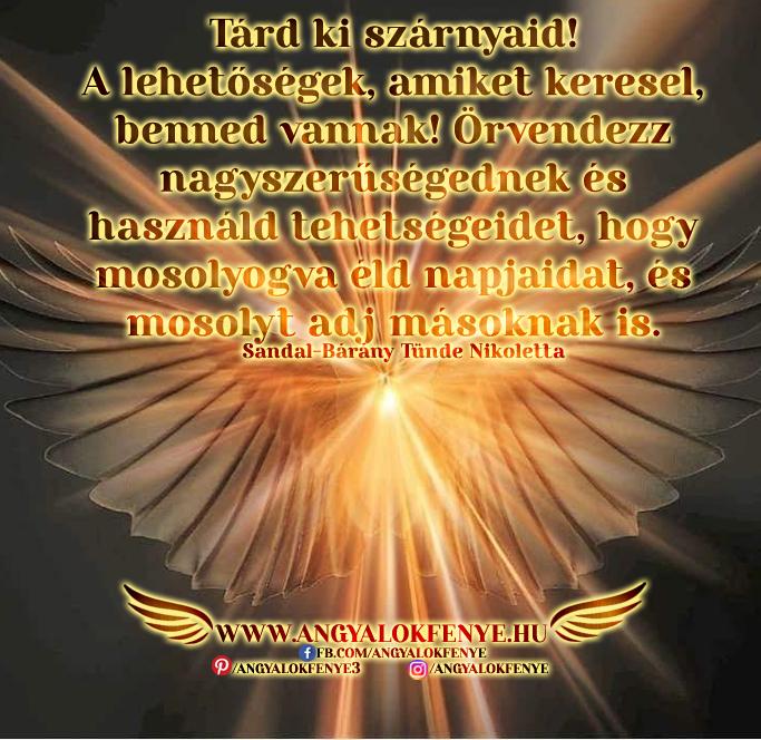 Photo of Angyali üzenet: Tárd ki szárnyaid!