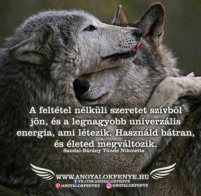 Photo of Angyali üzenet: A feltétel nélküli szeretet szívből jön