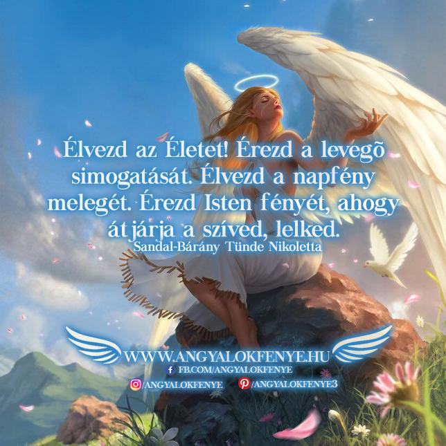 Photo of Angyali üzenet: Élvezd az Életet
