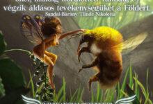 Photo of Angyali üzenet-Az elementálok mindig gondoskodnak a természetről