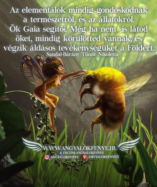 Angyali üzenet-Az elementálok mindig gondoskodnak a természetről