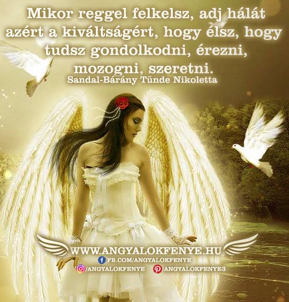 Angyali üzenet-Adj hálát kiváltságaidért