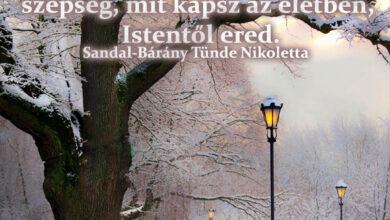 Photo of Angyali üzenet: Az élet szépsége