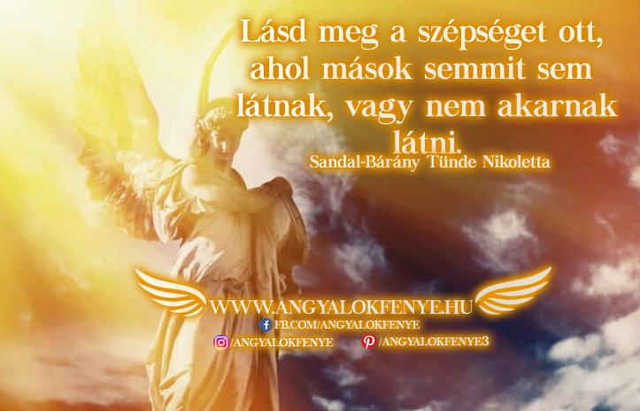 Angyali üzenet-Lásd meg a szépséget