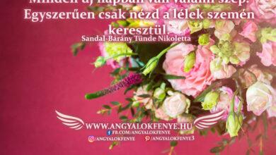 Photo of Angyali üzenet: Minden új napban van valami szép
