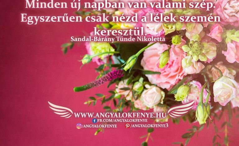 Angyali üzenet-Minden új napban van valami szép