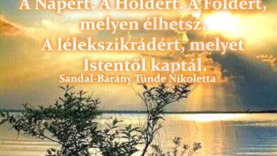 Photo of Angyali üzenet: Mondj hálát az életedért