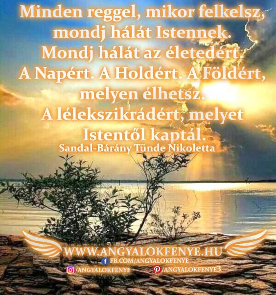 Angyali üzenet-Mondj hálát az életedért