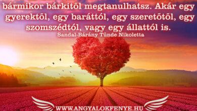 Photo of Angyali üzenet: Tanuld meg a szeretet leckéjét