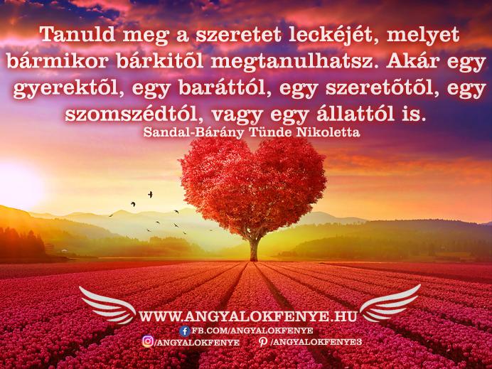 Angyali üzenet-Tanuld meg a szeretet leckéjét