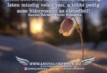 Photo of Angyali üzenet: Az élet pár szóban