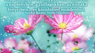 Photo of Angyali üzenet: Fedezd fel Istent mindenben