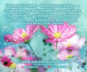 Angyali üzenet-Fedezd fel Istent