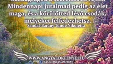 Photo of Angyali üzenet: Gazdagságod a szeretetben rejlik