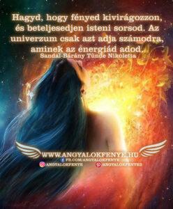 Angyali üzenet-Hagyd, hogy fényed kivirágozzon