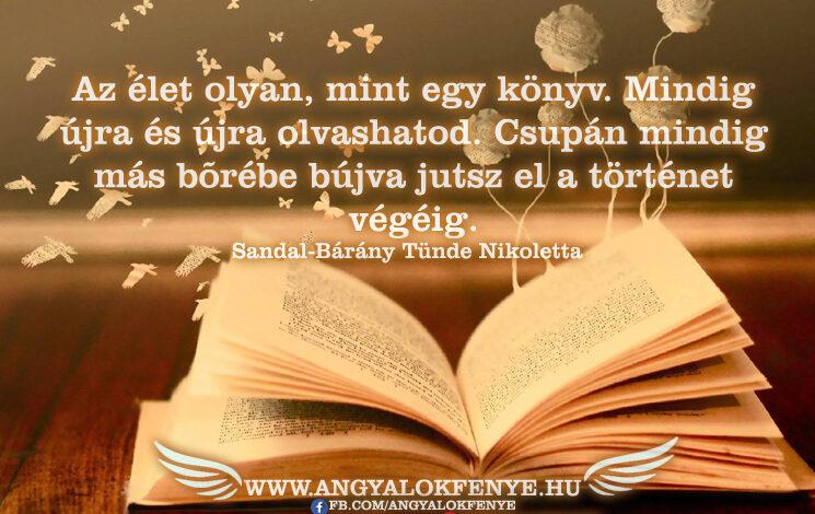 Angyali üzenet-Az élet olyan, mint egy könyv