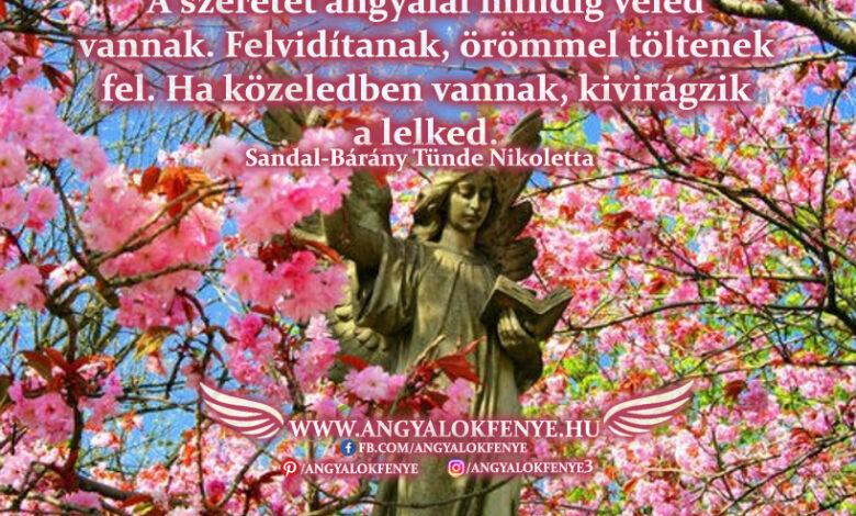 Angyali üzenet-A szeretet angyalai mindig veled vannak